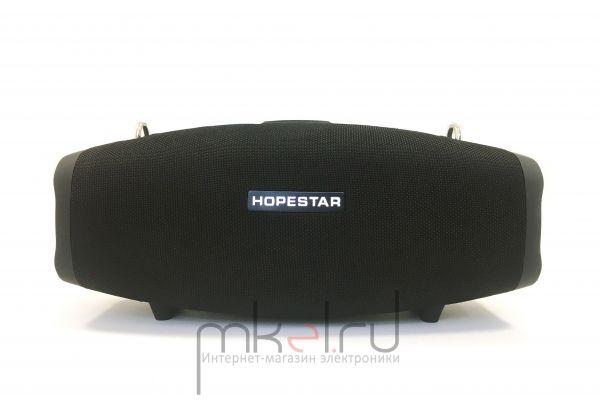 Портативная колонка HOPESTAR X с микрофоном